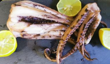 Tintenfisch (Pulpo)Tentakel Gigas tiefgefroren - 1 kg Schale