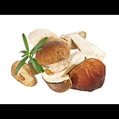 Steinpilze, geschnitten, tiefgefroren 1 kg Beutel